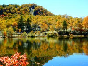秋、もみじに彩られた木戸池 - -山ノ内町- -