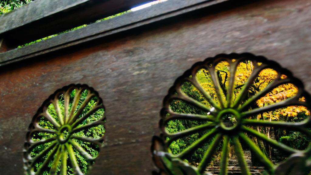 京都大原の寂光院:菊の透かし彫りから見える黄色いもみじ - -京都市左京区大原- -