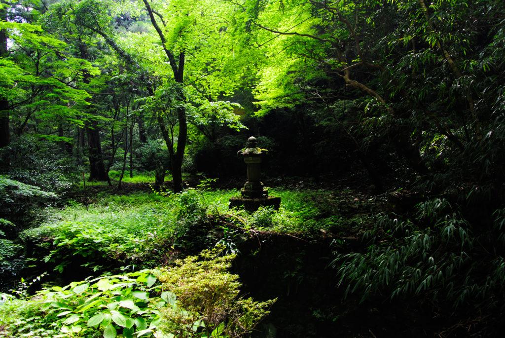 参道の途中、緑あざやかな参道途中の塔頭跡 - -愛知県新城市鳳来寺- -