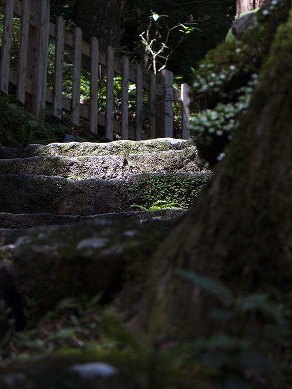 石畳の古道 - -那智の大滝- - 「撮る旅」