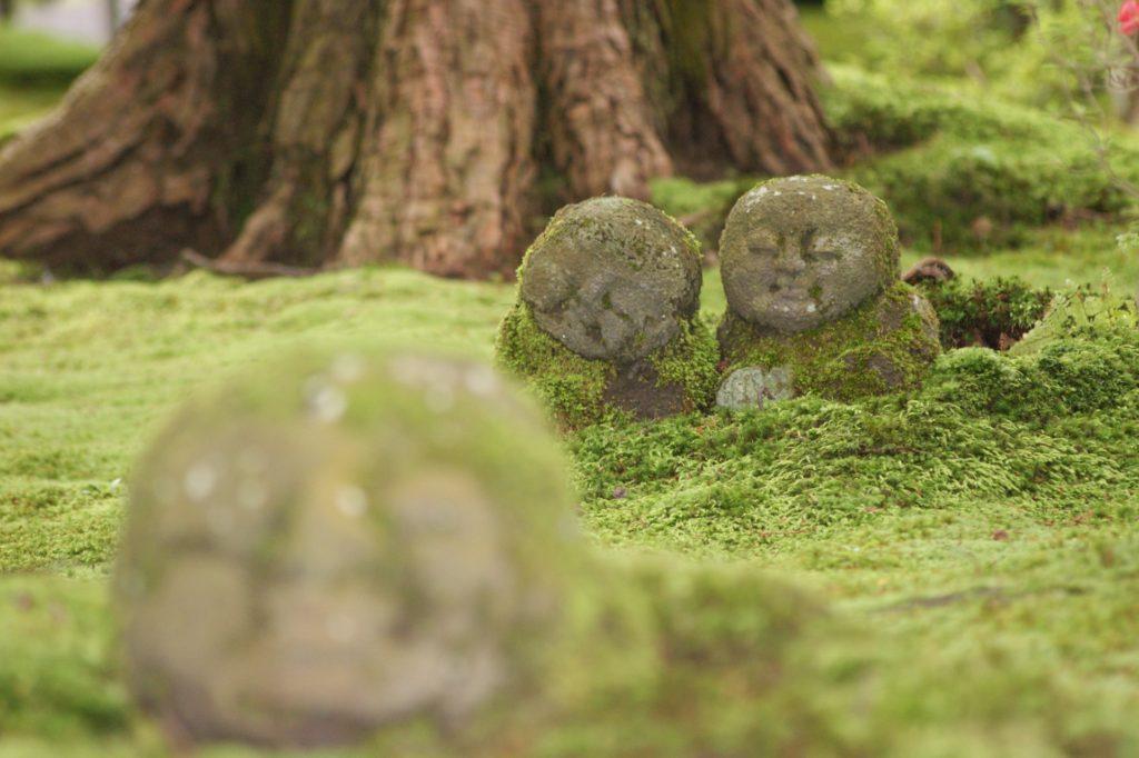 京都大原の三千院門跡:苔の庭にあそぶわらべ地蔵 - -京都市左京区大原- -