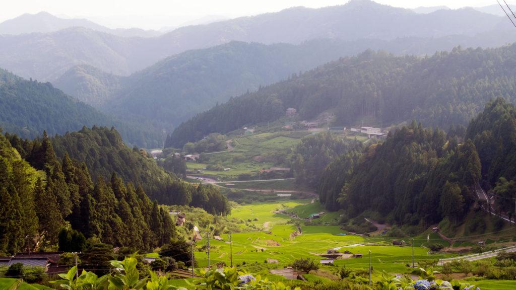 遠くの山々まで見渡せる四谷の千枚田、展望台 - -新城市:四谷の千枚田- -