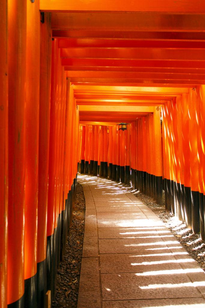朱をくぐり続ける異様な風景:千本鳥居 - -京都市伏見区伏見稲荷大社- -