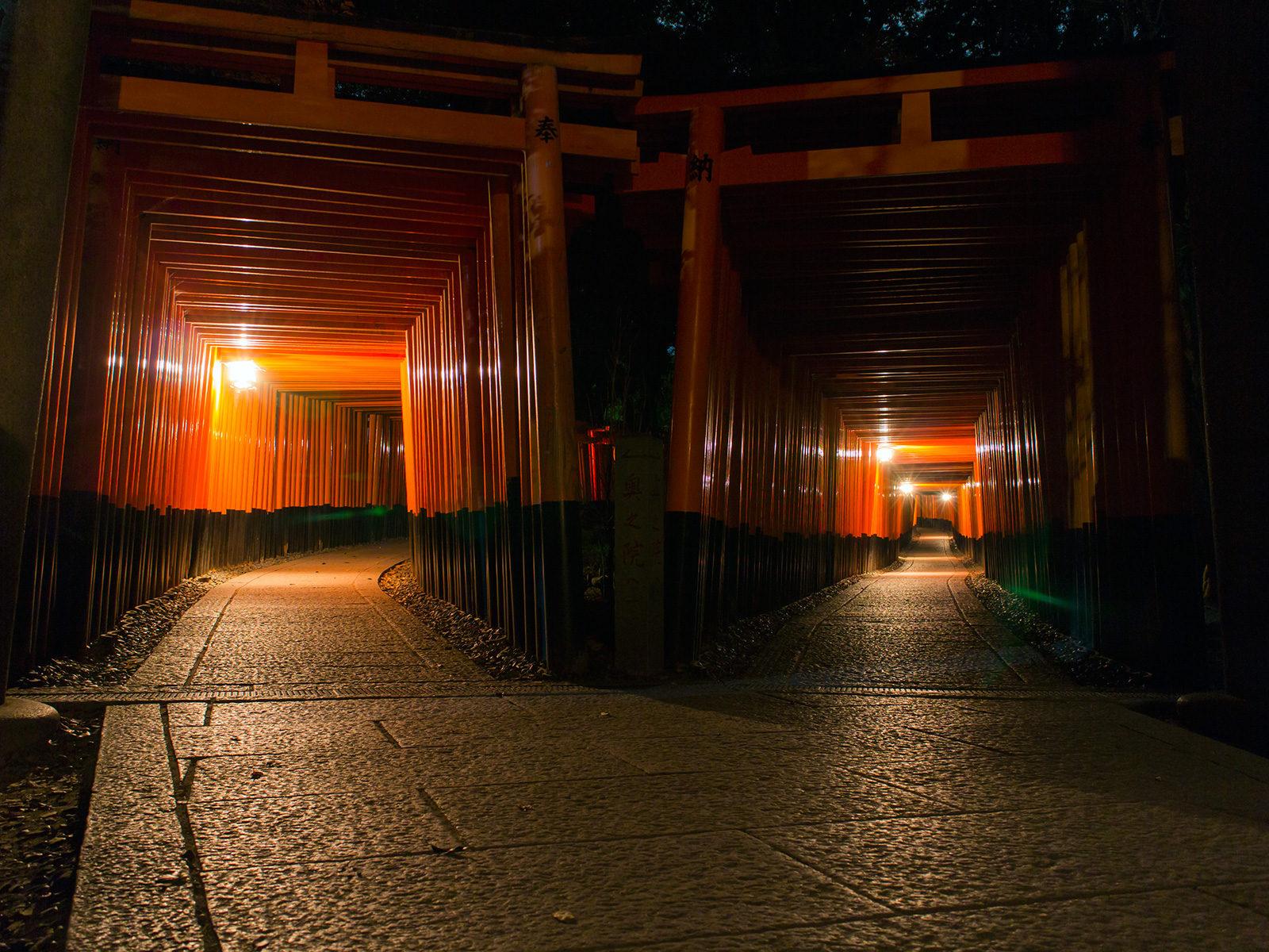 薄く照らされた鳥居が異界へいざなう雰囲気を出す千本鳥居 - -京都市伏見区伏見稲荷大社- -