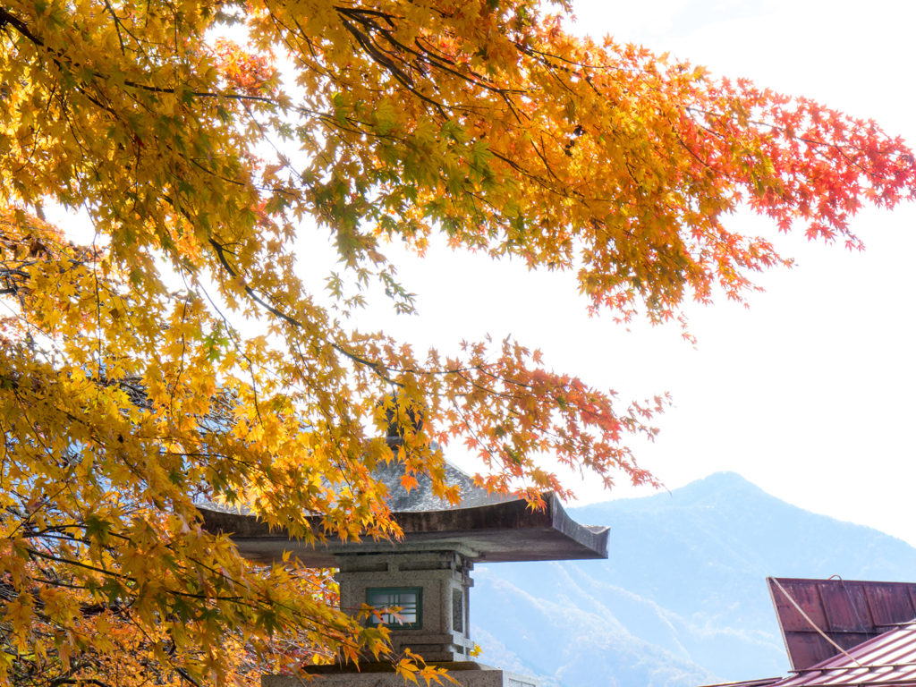 もみじで華やかにいろどられた参道 - -秩父市:三峰神社- -