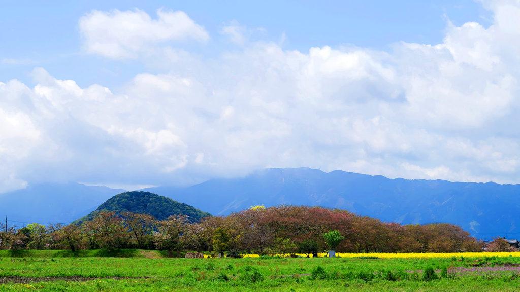藤原宮跡から眺める畝傍山 - -橿原市:畝傍山- -