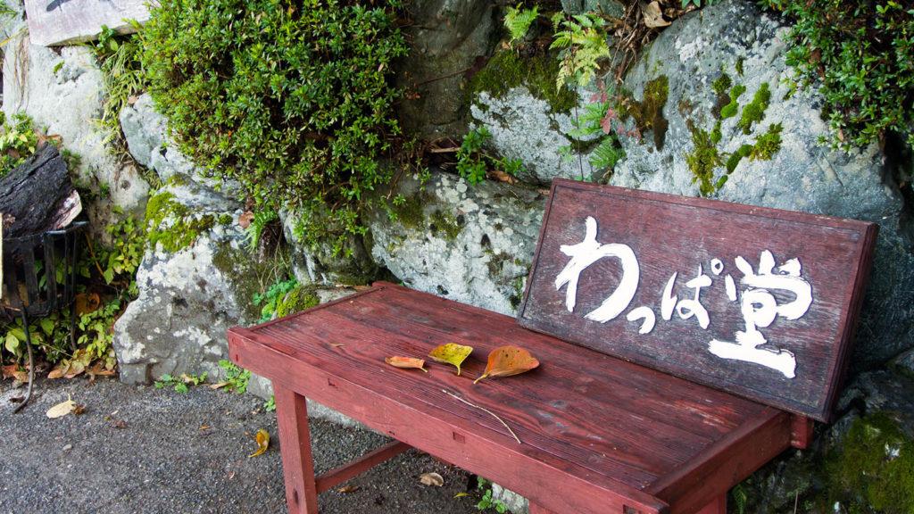 看板の手前にある落ち葉が良い味をだしている - -京都、大原- -