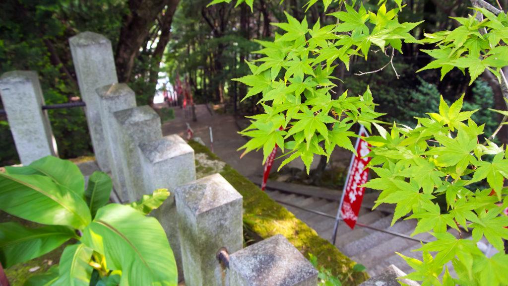 参道の石段も美しい緑に覆われる - -愛知県岡崎市:岩津天満宮- -
