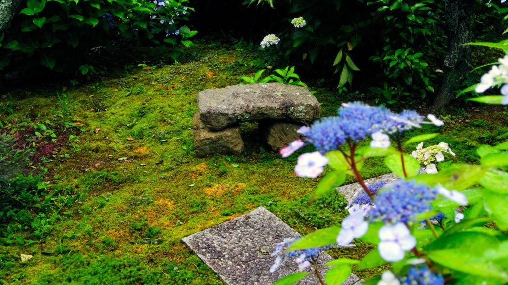 苔むした庭園に伸びる石畳のみち - -愛知県の観光、撮影スポット:本光寺- -