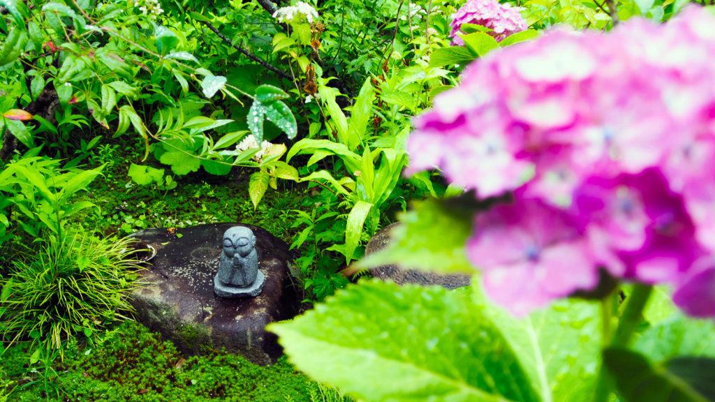 本堂前の苔むした日本庭園には可愛いお地蔵様も - -愛知県の観光、撮影スポット:本光寺- -