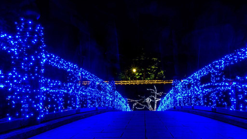 普段とはまったく違った顔を見せる神橋 - -愛知県岡崎市- -