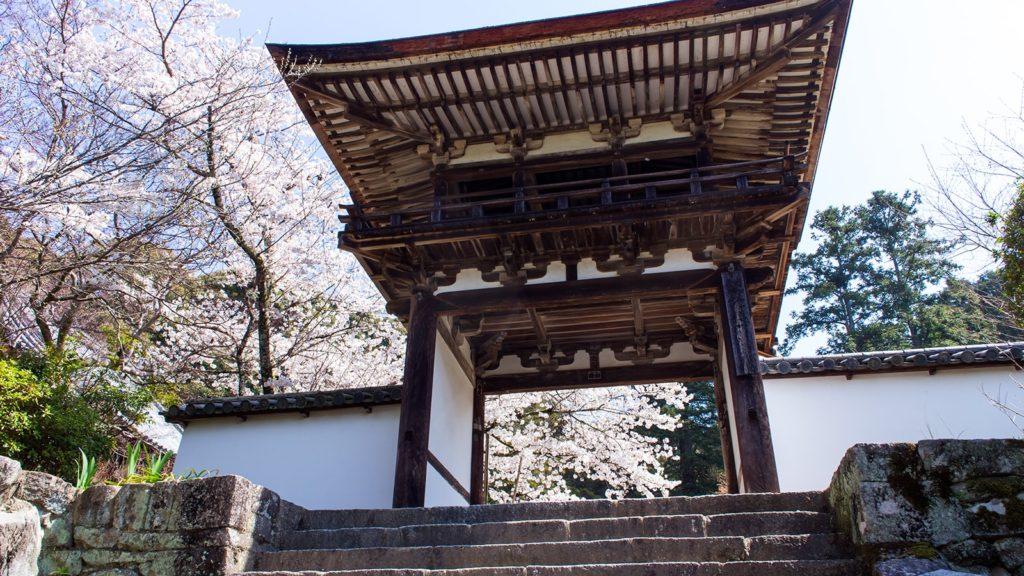 創建当時から残る唯一の建造物、鐘楼門も春には華やかな桜に映える - -奈良県天理市にある観光、撮影スポット:長岳寺- -