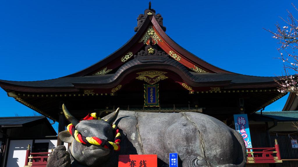 学問の神として有名な岩津天満宮:撫で牛と拝殿 - -愛知県岡崎市:岩津天満宮- -