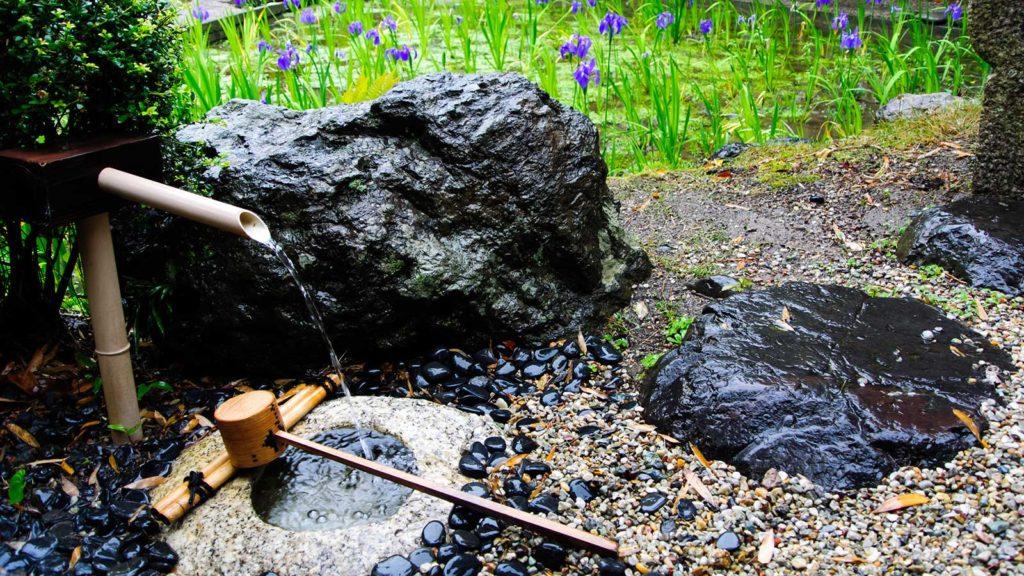 無量寿寺の庭園は日本の文化的な庭園とかきつばたを愉しめる  - -愛知県知立市にある観光、撮影スポット- -