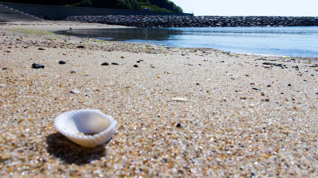 冬の吉良ワイキキビーチには小さな貝殻が寂しげに・・・ - -愛知県西尾市にある観光、撮影スポット- -