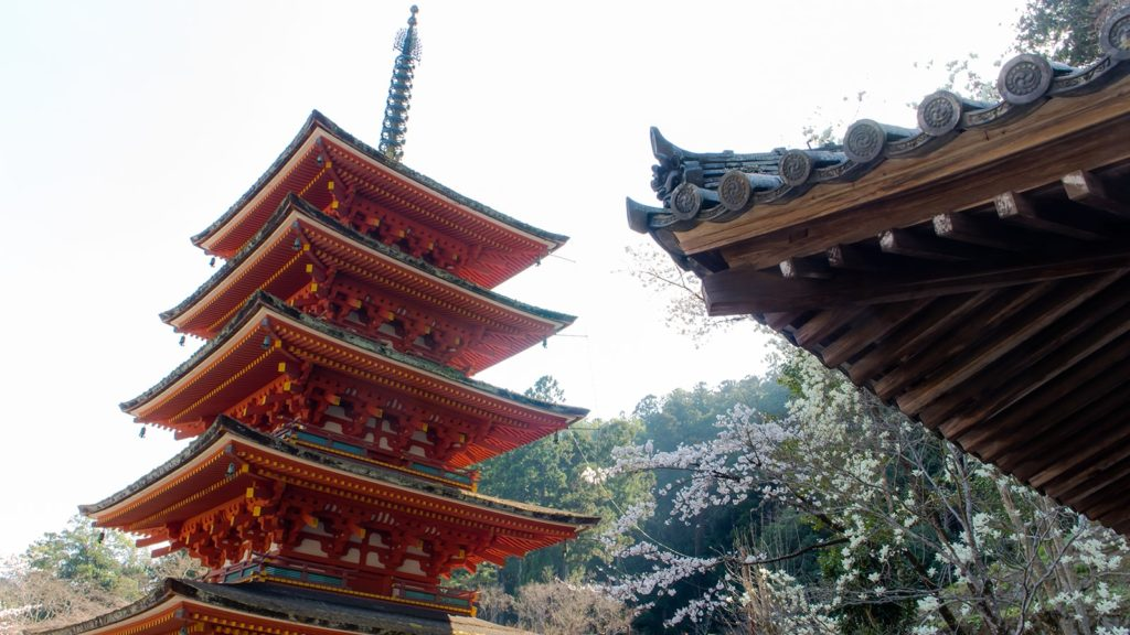 長谷寺の五重塔、春は桜、秋はもみじとの競演が美しい - -奈良県桜井市にある観光、撮影スポット- -