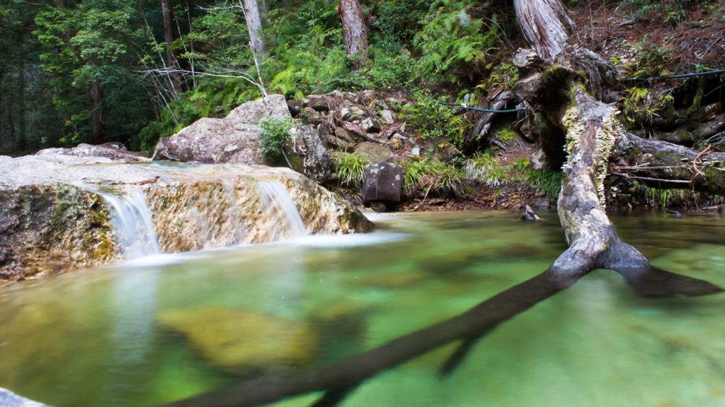 透明度が高くエメラルドグリーンに澄み渡った渓谷 - -愛知県新城市にある観光、撮影スポット- -