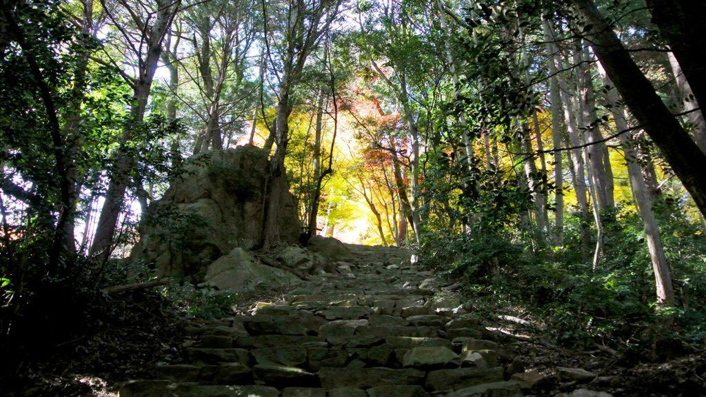 長い石段を登りきるとこがね色に染まった瓦屋禅寺の境内が出迎えてくれる - -滋賀県東近江市にある観光、撮影スポット- -