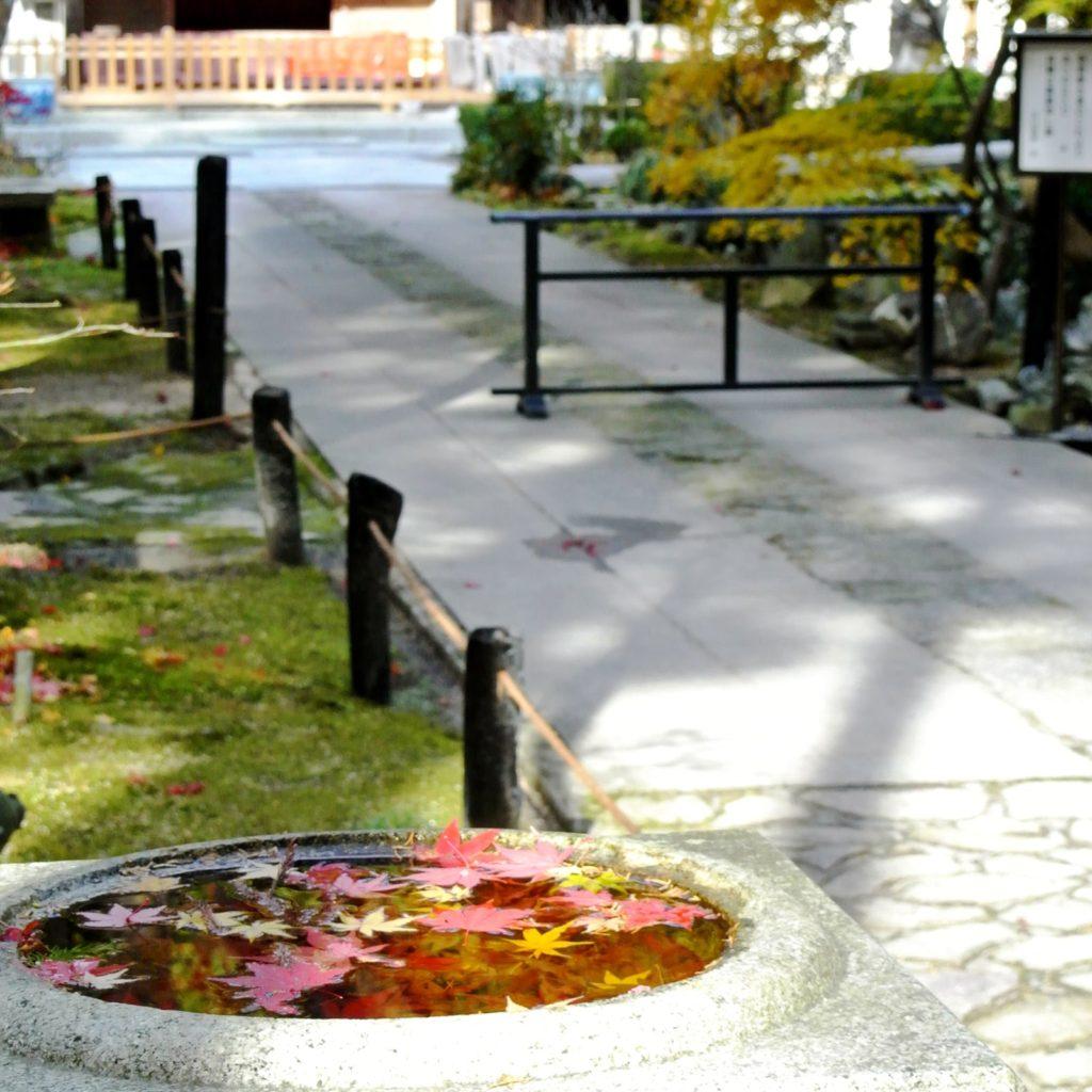 侘び寂びた山寺の風情が濃い庫裏前のみち - -滋賀県東近江市にある観光、撮影スポット- -