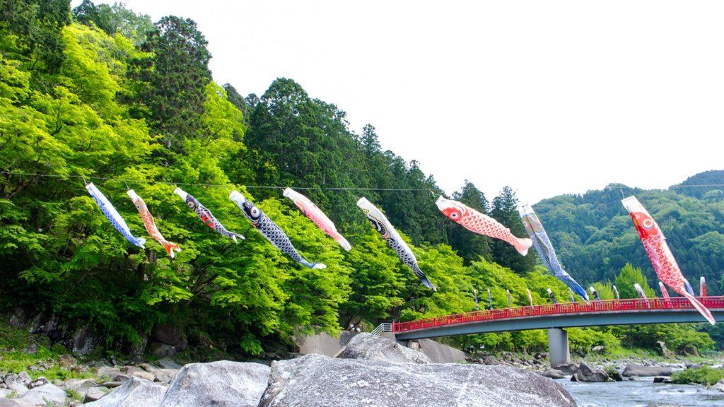 ゴールデンウィーク頃には若々しい新緑の青もみじのなかを鯉のぼりが泳ぐ - -愛知県豊田市にある観光、撮影スポット- -