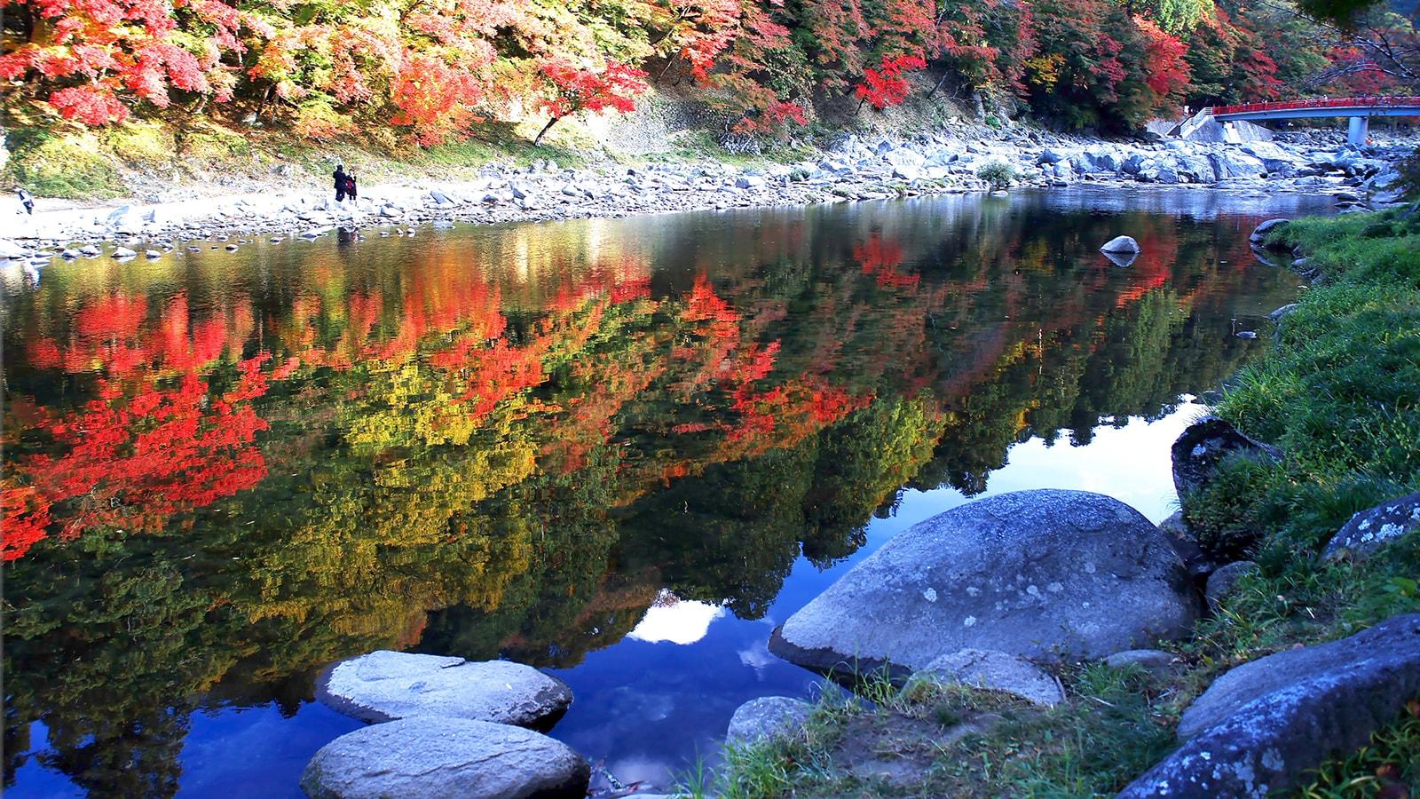 東海地方随一の紅葉スポット香嵐渓の絶景 - -愛知県豊田市にある観光、撮影スポット- -