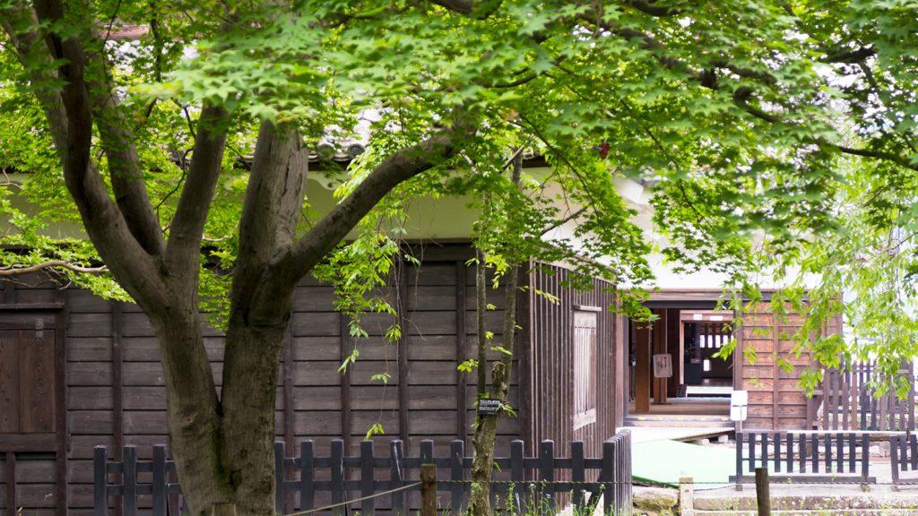 大手門脇から眺める新緑越しの櫓  - - 長野県の観光、撮影スポット- -
