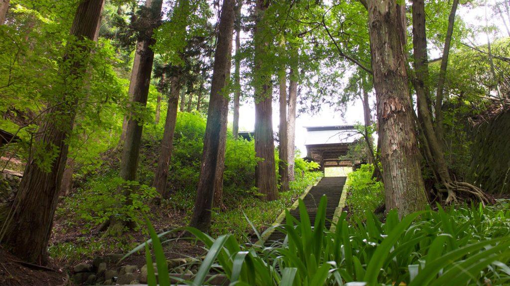 安楽寺へ向かうとまず出会うのが、この風景 - - 長野県の観光、撮影スポット- -