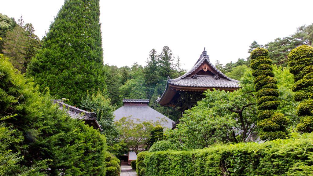 本堂へ向かうまっすぐな道:安楽寺 - - 長野県上田市の観光、撮影スポット- -