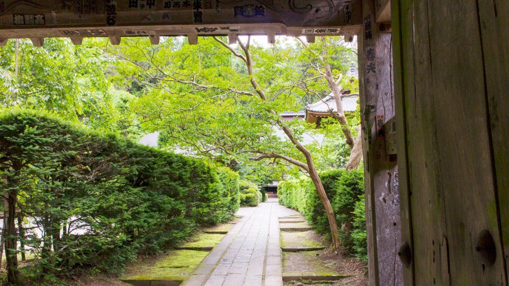 山門から見た本堂への道、鮮やかな緑に包まれた境内が出迎えてくれる - - 長野県の観光、撮影スポット- -