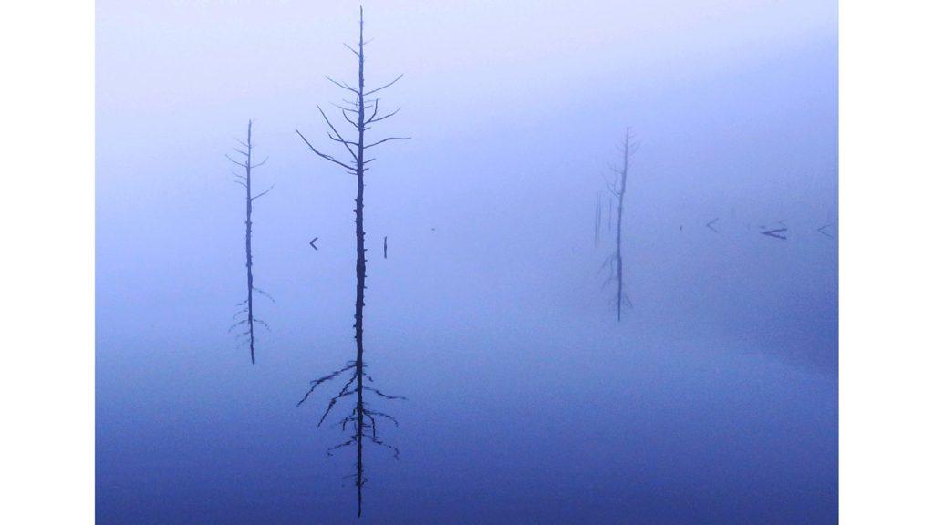 冬の早朝、女神湖では幻想的な風景も愉しめる - - 長野県立科町の観光、撮影スポット- -