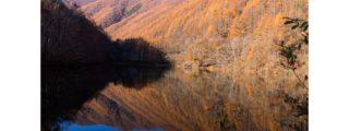 紅葉の穴場撮影スポット:竜ヶ沢ダム(長野県上田市にある観光、撮影スポット)