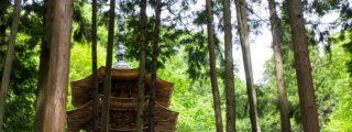 静かに佇む八角三重塔、信州最古の禅寺: 安楽寺 (長野県上田市の観光、撮影スポット)