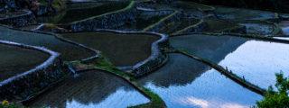 険しい地に残る絶景:四谷の千枚田(愛知県の観光、撮影スポット)