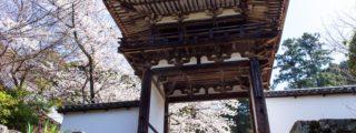 四季折々の花が咲く花浄土: 長岳寺 (奈良県の観光、撮影スポット)