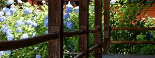 お地蔵さまとあじさいの寺: 矢田寺 (奈良県の観光、撮影スポット)