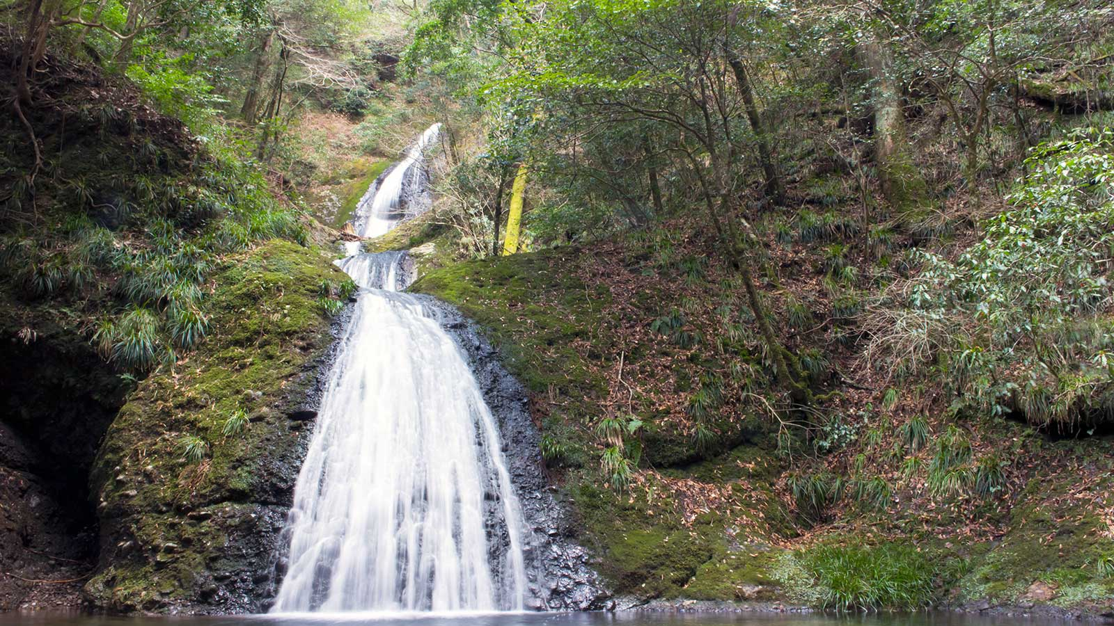 下からは最上部まで見えないが美しい曲線を描く阿寺の七滝 - -愛知県の観光、撮影スポット:阿寺の七滝- -