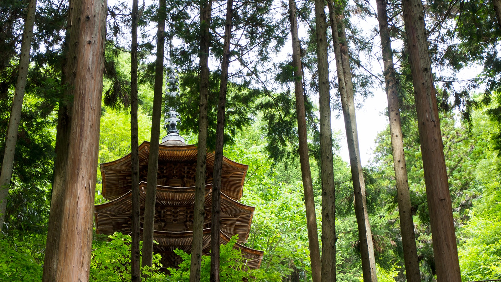 山間にひっそりと佇む安楽寺、八角三重塔 - - 長野県の観光、撮影スポット- -