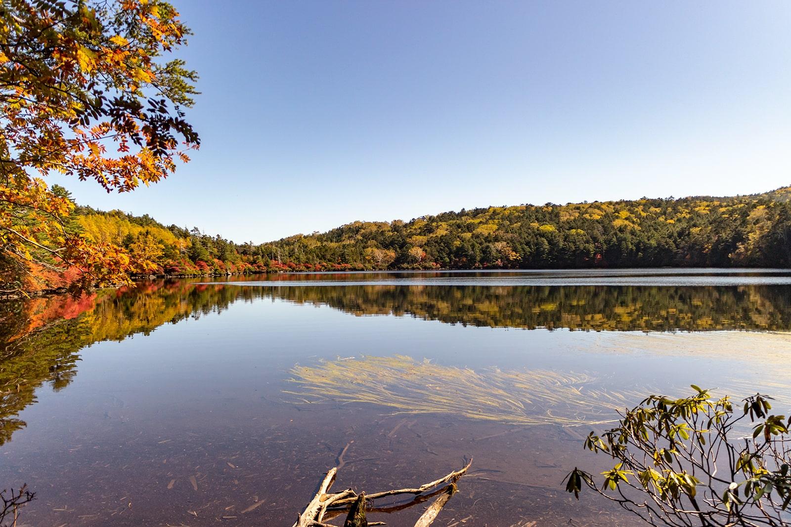 秋、澄んだ水面に紅葉が映り込む白駒池
